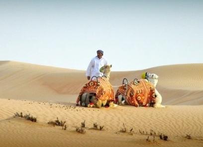 Camelridedubai